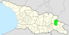თელავის მუნიციპალიტეტი