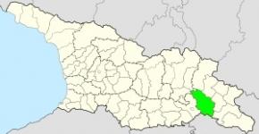 საგარეჯოს მუნიციპალიტეტი