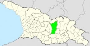 გორის მუნიციპალიტეტი