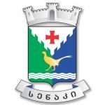 სენაკის მუნიციპალიტეტი