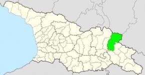 ახმეტის მუნიციპალიტეტი