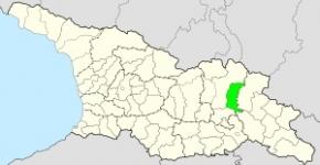თიანეთის მუნიციპალიტეტი