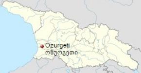 თვითმმართველი ქალაქი ოზურგეთი